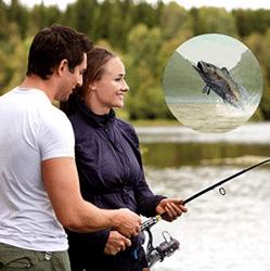 Comparatif canne à pêche