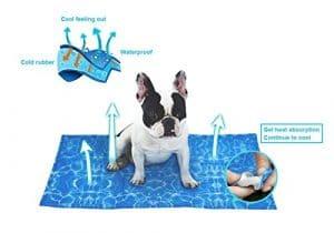 tapis rafraîchissant pour chien