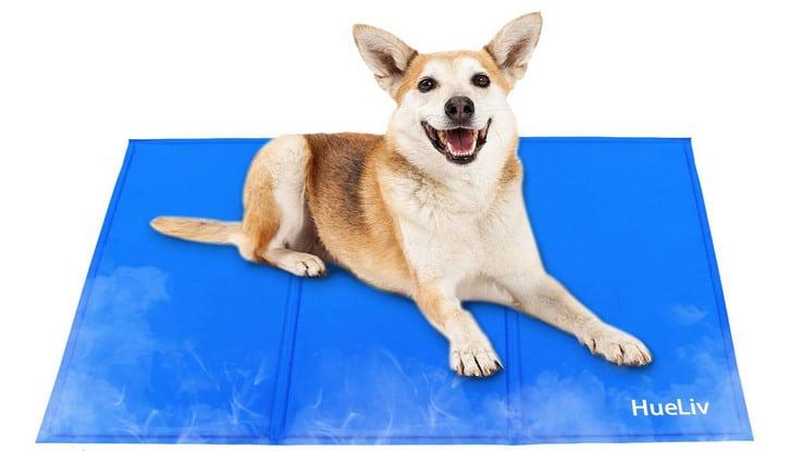 Comparatif meilleur tapis rafraichissant pour chien