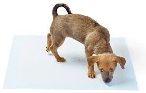 comparatif meilleur tapis éducateur pour chien