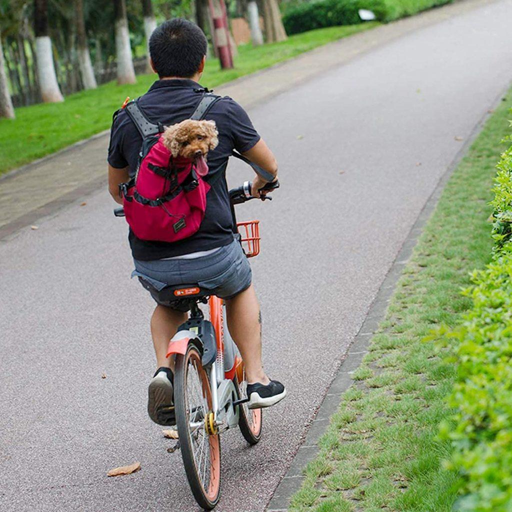 Sac Transport Chat Chien Respirant et Pliable
