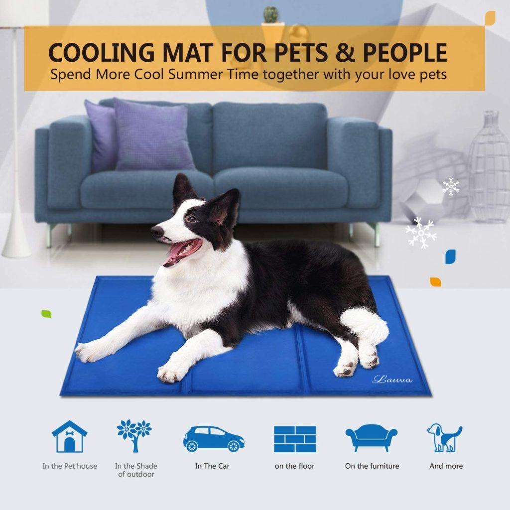 Meilleur tapis rafraîchissant pour chien